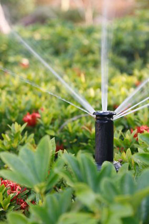 water conservation sprinkler
