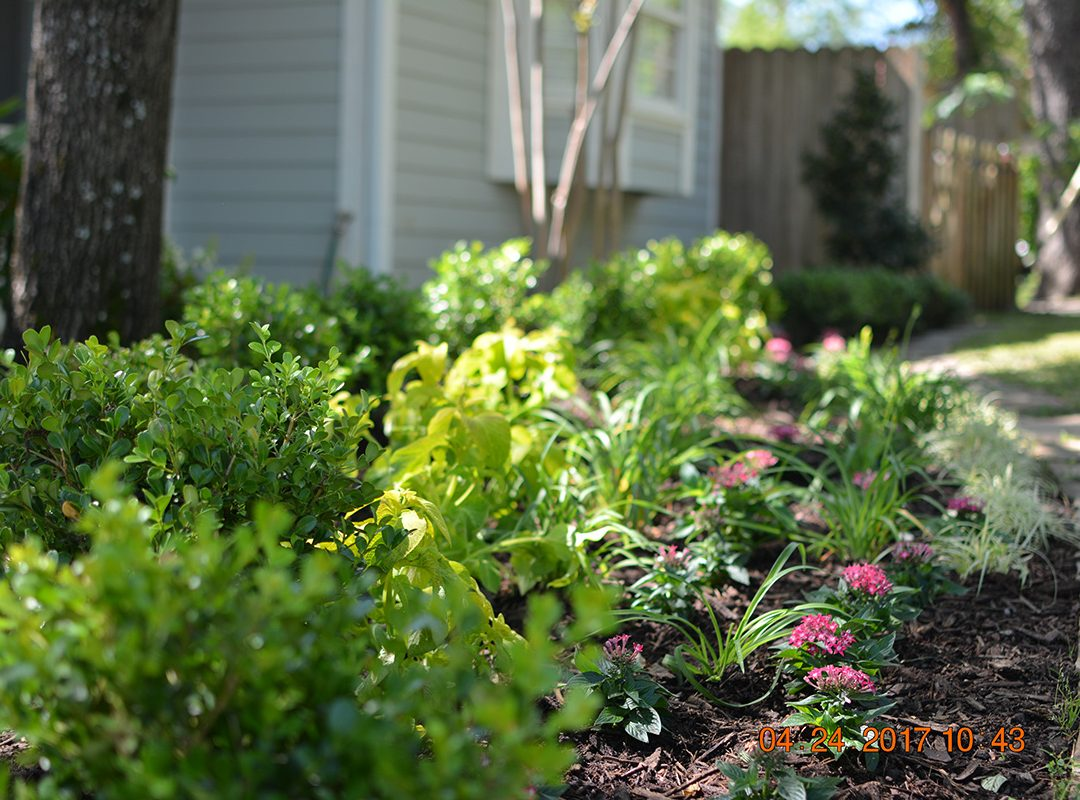 residential landscaping, flowerbeds, borders, planting circles